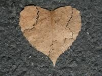 Mercur retrograd în Balanță, 27 septembrie-18 octombrie. Vorbe frumoase care dor. Sursă foto: Pixabay