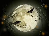 Halloween: Costumul ideal pentru petrecerile online, în funcţie de zodie (sursa foto: Pixabay)